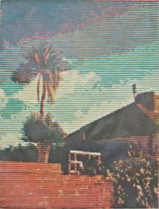 Trevor Banthorpe,  Palmhouse 1
