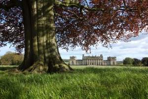 Spring - Harewood House © Simon Warner and Harewood House Trust