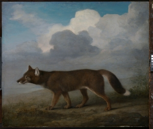 Portrait of a large dog (Dingo) George Stubbs, 1772 Oil on mahogany panel National Maritime Museum, London