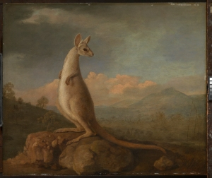 The Kongouro from New Holland (Kangaroo)       by George Stubbs, 1772 Oil on mahogany panel National Maritime Museum, London