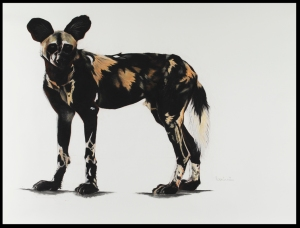 Large African Wild dog I, 55cm x 140cm, Charcoal and pastel on paper