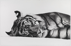 Sleeping Jae Jae, 103cm x 66cm, Charcoal on paper