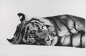 Sleeping Jae Jae, 103cm x 66cm, Charcoal on paper