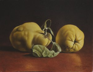 TWO QUINCES, 2013 Oil on Panel 9½ x 12¾ ins (approx) / 24 x 32 cm Courtesy of Lucy B Campbell Fine Art