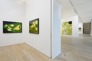 Installation View - Brian Clarke, Pace London, Lexington Street, London W1 (C)