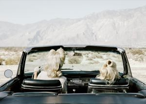 "Anja Niemi ""The Chrysler"" 2014 Copyright of the artist, courtesy The Little Black Gallery"
