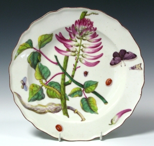 Corallodendron: A Chelsea plate with a wavy brown-edged rim, painted with a Corallodendron flower, leaves, floret, seed pod and seeds, and two butterflies. c. 1753-56                                     Mark: red anchor over 34,  Diam: 24.5 cm          Private Collection