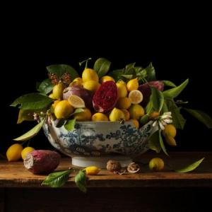 Paulette Tavormina. 'Lemons and Prickly Pears, 2013' Beetles + Huxley