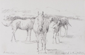 Mare and Foals at Whitsbury Manor Stud Pencil 6 x 8.5 ins