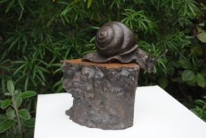 Angela Hunter Snail on Elm Burr Edition 12 Bronze