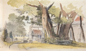 HREE SYCAMORES ON THE GRAVE OF WILLIAM HUTCHINSON, ST JOHN THE BAPTIST, ALDENHAM, HERTFORDSHIRE RANDOLPH SCHWABE, RWS LG NEAC (1885-1948) SIGNED WITH INITIALS, INSCRIBED 'ALDENHAM' AND DATED 1943 INSCRIBED 'ALDENHAM' AND '43/1' AND DATED 43 BELOW MOUNT WATERCOLOUR AND CHALK 8 X 12 INCHES PROVENANCE: THE ESTATE OF RANDOLPH SCHWABE