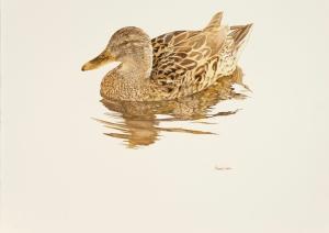 Roland Corbin On the Water Watercolour on Fabriano Artistico paper 22.5 x 29.5ins (57.1 x 74.9cm)